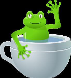 frog-37107_960_720