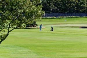 golf-928430_960_720